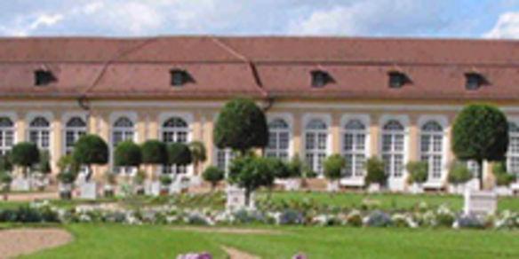 Goldkegel in Ezelsdorf | Goldkegel in Ezelsdorf bei